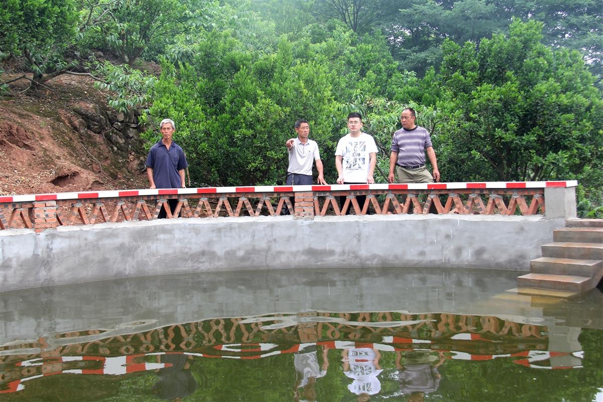 仁寿文宫镇山顶上建蓄水池果树不再口渴