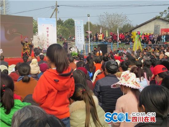 东坡三苏镇第二届梨花节开幕